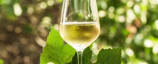 Vignoble chambres d 39 h tes en bourgogne for Chambre d hote de charme bourgogne