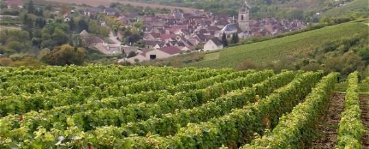 Maison d'Hôtes en Bourgogne:Chablis