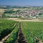 villege-saint-bris-vignoble-bourgogne-chambres-hotes
